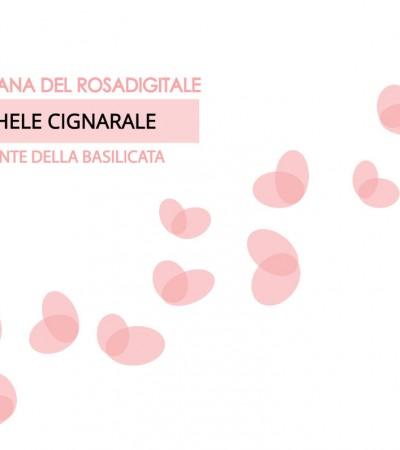 Basilicata. Michele Cignarale referente