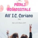 petali-rosa-allic-coriano